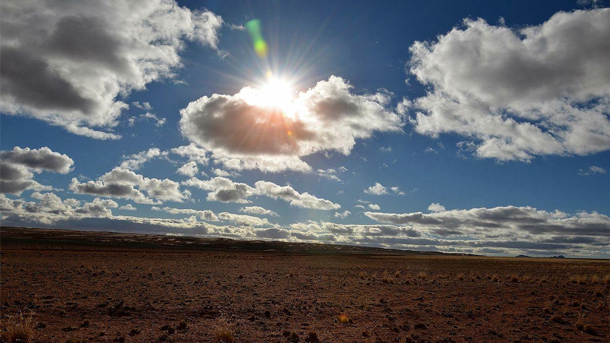 Afbeelding van Wat betekent de langdurige droogte voor Nederland?