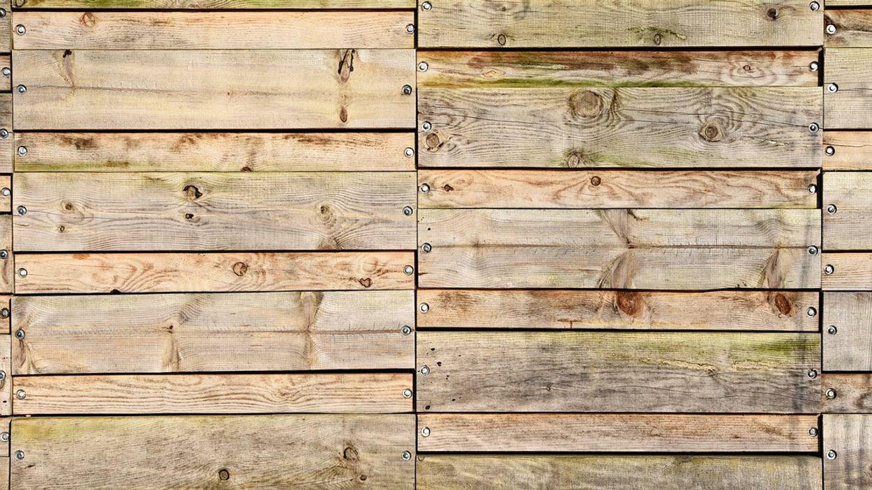 Afbeelding van Hoe verwijder je schimmelplekken uit hout?