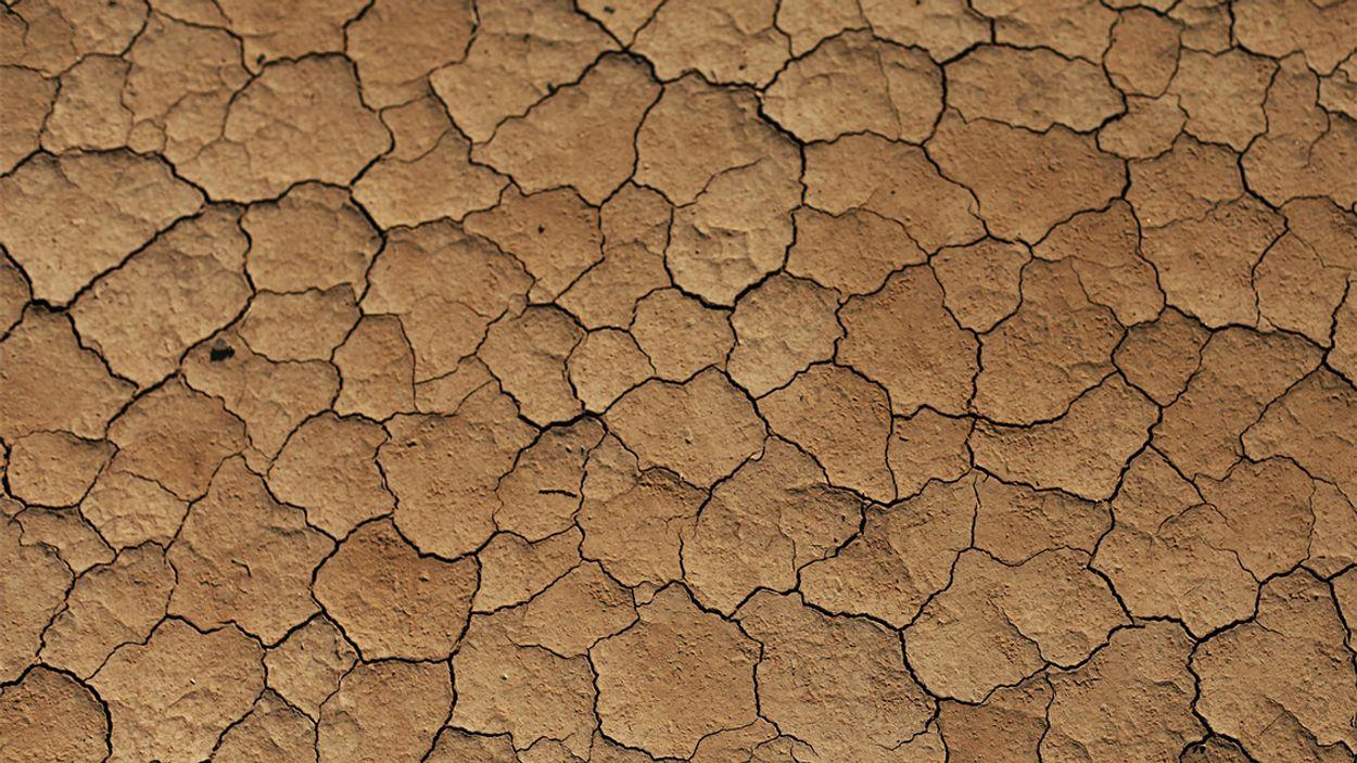 Afbeelding van Milieuvervuiling veroorzaakt door recyclen grond