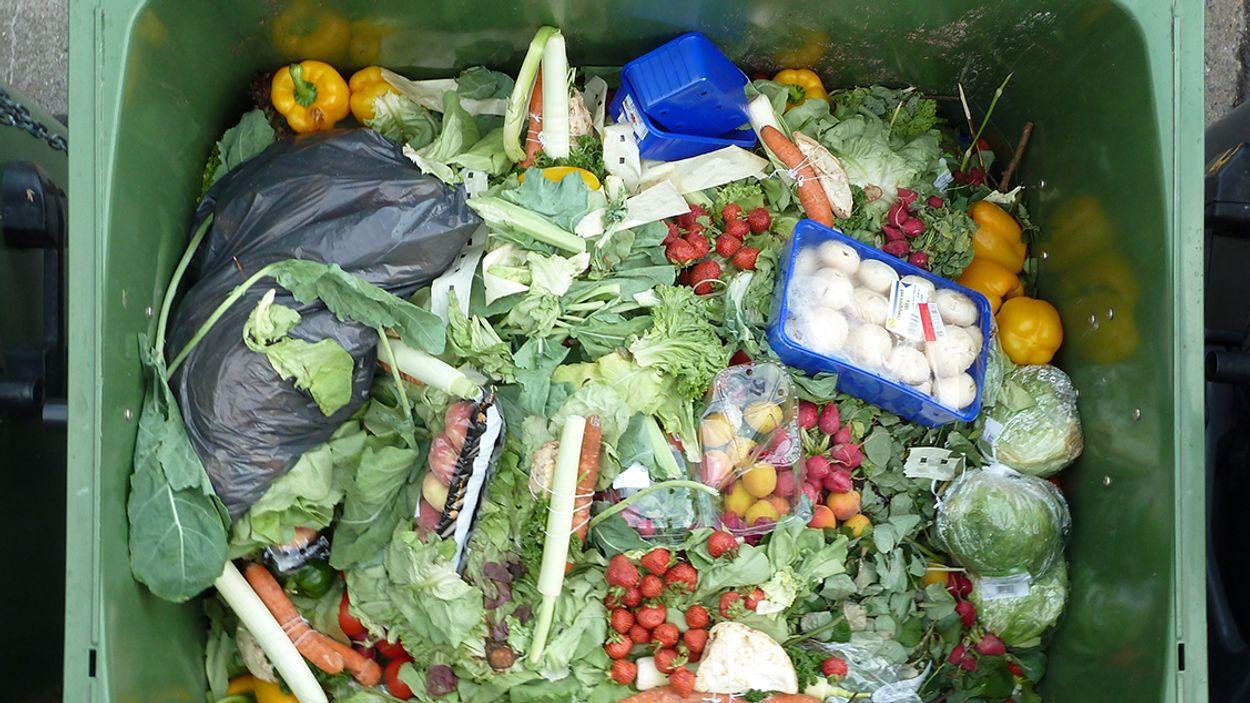 Afbeelding van Minder voedsel verspillen? Een app helpt je op weg