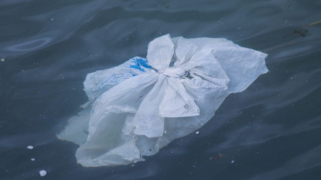 Afbeelding van Kun jij zonder de plastic tas?