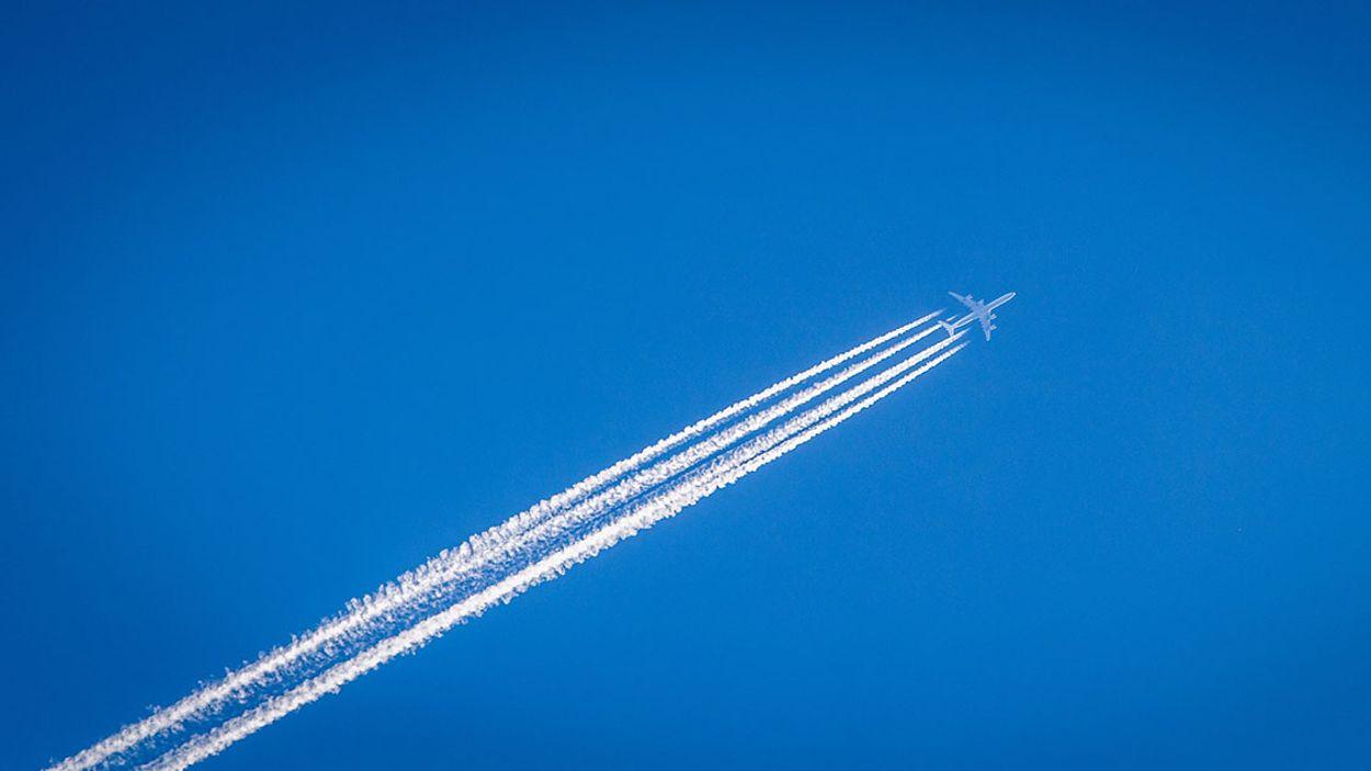 Afbeelding van Aviclaim start zaak tegen vluchtmaatschappijen om vouchers