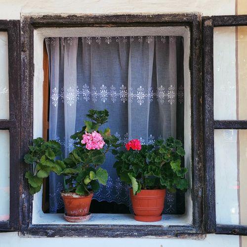 Afbeelding van Oproep: Ben je je droomhuis misgelopen door een bouwkundige keuring?