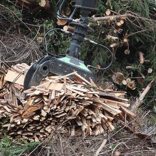 Afbeelding van SER: biomassa niet meer gebruiken voor stroom