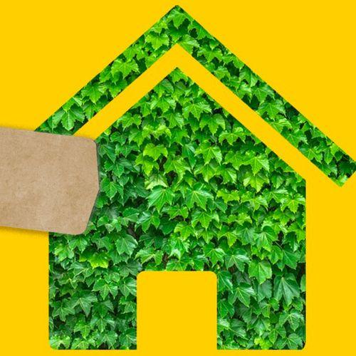Afbeelding van Helft Nederlanders wil niet extra betalen voor duurzame optie