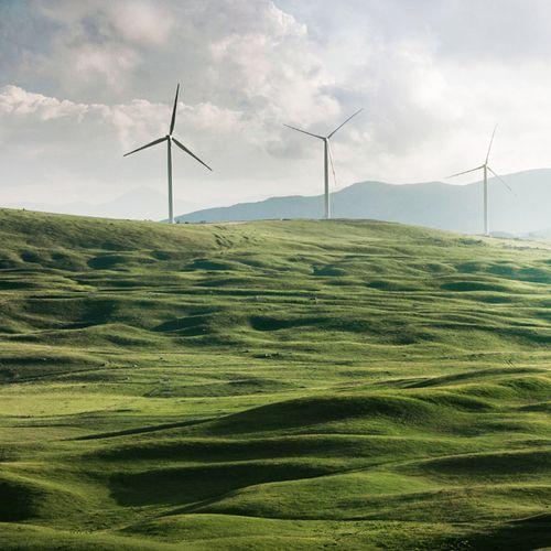 Afbeelding van 'Groene stroom van duurzame leverancier wint terrein'